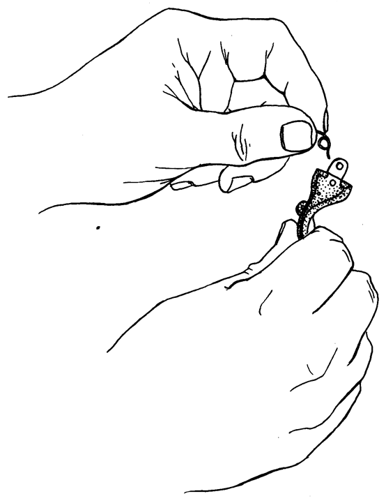 Рисунок 4.19 - Отделение пружины спускового крючка