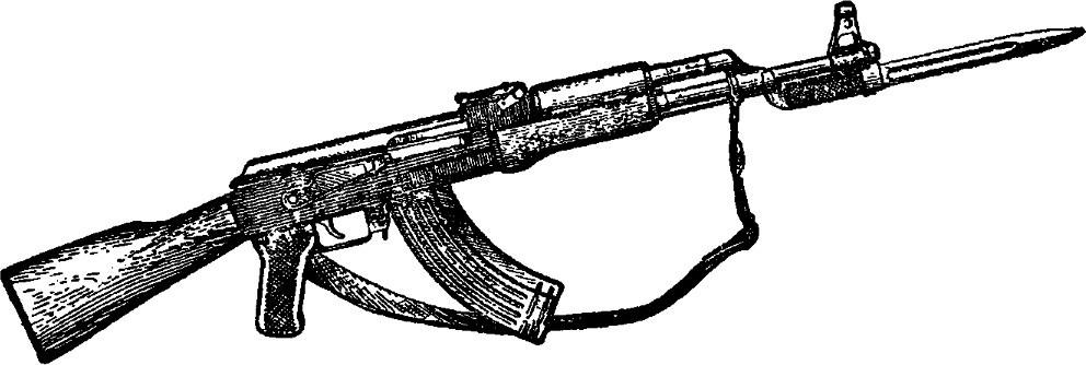 Рис. 1. Общий вид автомата Калашникова (АК): а — с деревянным прикладом